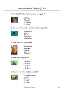 photo regarding Animal Trivia Questions and Answers Printable identify Quizzes for Kidsanswer young children quizzes with pics - totally free