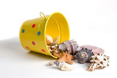 sea shell crafts for kids