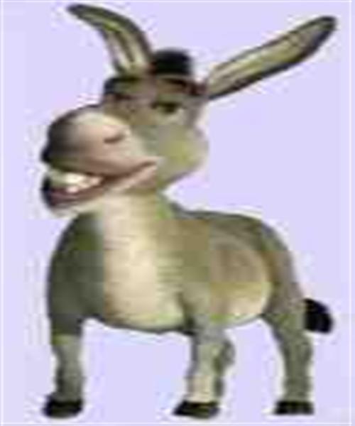 donkey-shrek