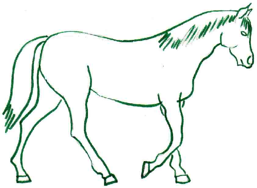 Horse Drawing Pages